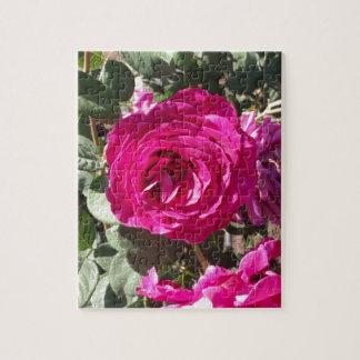 Jorianda Rose Puzzles