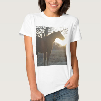 Jose Benito T-Shirt