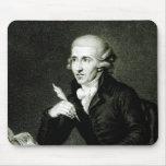 Joseph Haydn c.1770 Tapetes De Ratones