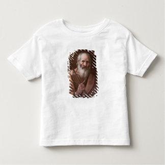 Joseph of Nazareth Toddler T-shirt