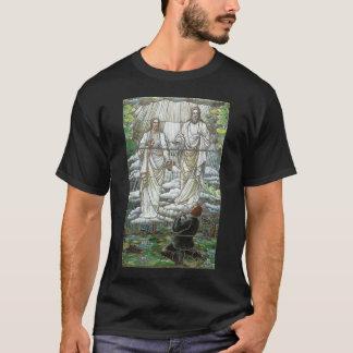 Joseph Smith first vision T-Shirt