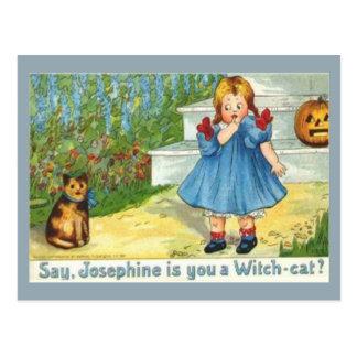 Josephine el gato de la bruja tarjetas postales