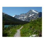Josephine Lake Trail with Mount Guild at Glacier Postcard