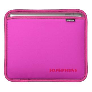 Josephine's ipad sleeve
