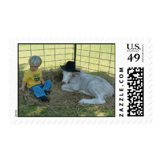 Josh and calf postage