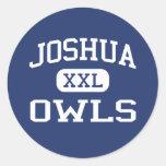 Joshua - búhos - High School secundaria de Joshua Pegatina Redonda