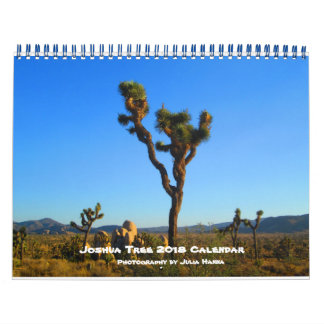 Joshua Tree 2018 By Julia Hanna Calendar