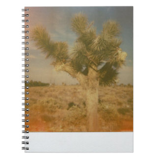 Joshua Tree Decorated Notebook