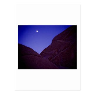 Joshua Tree Moonrise Postcard