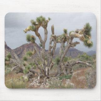 Joshua Tree Mouse Pad