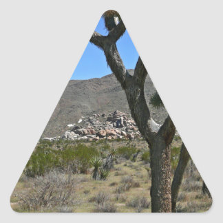 Joshua Tree National Park 8 Triangle Sticker
