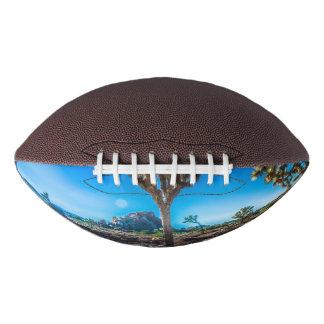 Joshua Tree National Park California Football