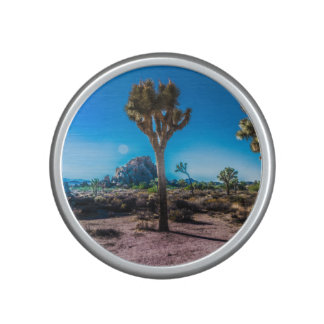 Joshua Tree National Park California Speaker