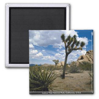 Joshua Tree National Park, California, U.S.A. 2 Inch Square Magnet
