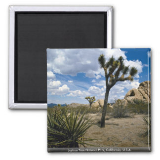 Joshua Tree National Park, California, U.S.A. Refrigerator Magnet