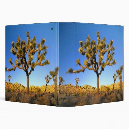 Joshua Tree National Park, California. USA. 3 Ring Binder