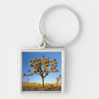 Joshua Tree National Park, California. USA. Keychain