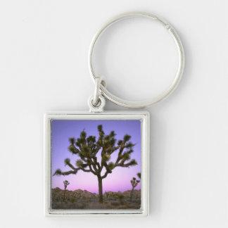 JOSHUA TREE NATIONAL PARK, CALIFORNIA. USA. KEYCHAINS