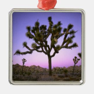 JOSHUA TREE NATIONAL PARK, CALIFORNIA. USA. METAL ORNAMENT