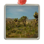 Joshua Tree National Park Desert Landscape Metal Ornament