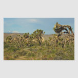 Joshua Tree National Park Desert Landscape Rectangular Sticker