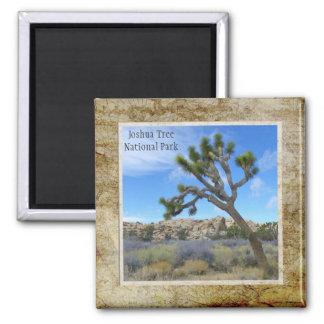 Joshua Tree National Park Magnet!