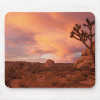 Joshua Tree National Park - Sunrise Mouse Pad