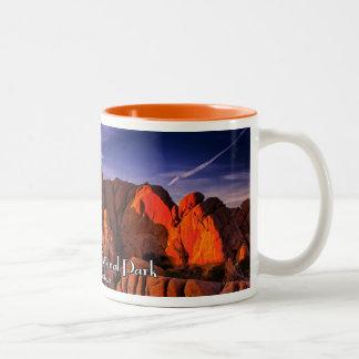 Joshua Tree National Park Two-Tone Coffee Mug