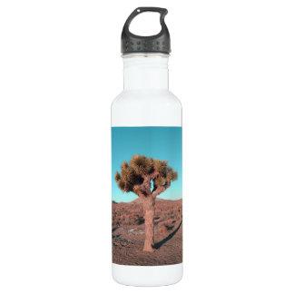 Joshua Tree 24oz Water Bottle