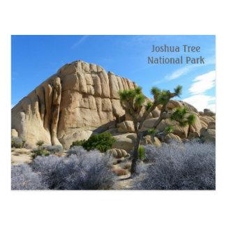 Joshua Tree Postcard! Postcard