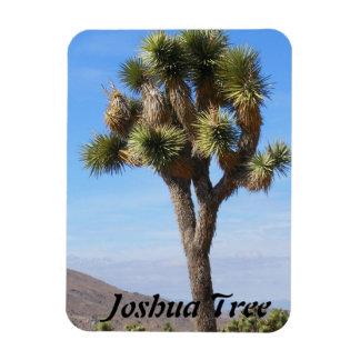 Joshua Tree Premium Magnet