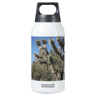 Joshua Tree 10 Oz Insulated SIGG Thermos Water Bottle