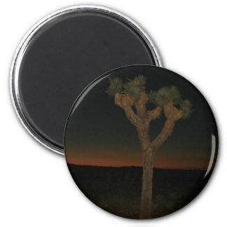 Joshua Tree Sunset 2 Inch Round Magnet