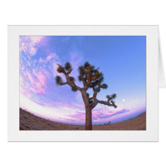 """Joshua Tree Swirl"" Card"