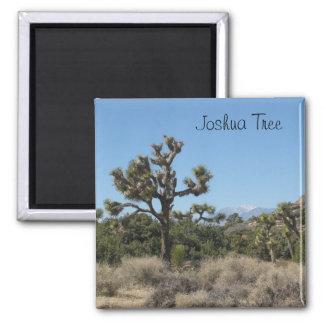 Joshua Tree View 2 Inch Square Magnet