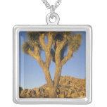 Joshua Tree, Yucca brevifolia), and granite Square Pendant Necklace
