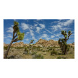 Joshua Trees and Blue Sky Desert Landscape Poster