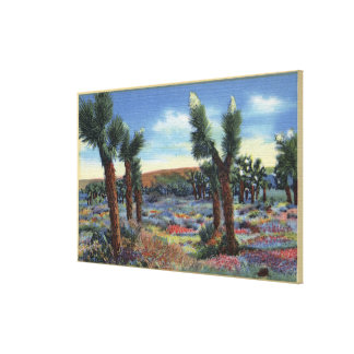 Joshua Trees and Desert Wild Flowers View Stretched Canvas Print