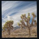 "Joshua Trees in Desert Cloth Napkin<br><div class=""desc"">Two Joshua Trees in desert,  with clouds</div>"