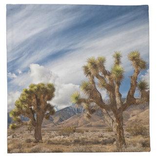Joshua Trees in Desert Cloth Napkin