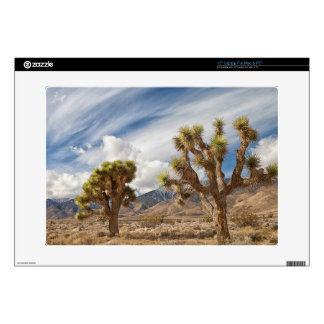"Joshua Trees in Desert Decal For 15"" Laptop"