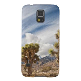 Joshua Trees in Desert Galaxy S5 Case