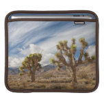 Joshua Trees in Desert Sleeves For iPads