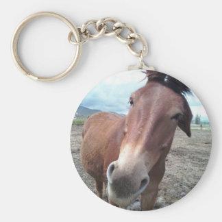 Josie, the funny mule keychain