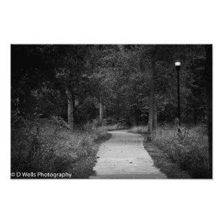 Journey Photo Print