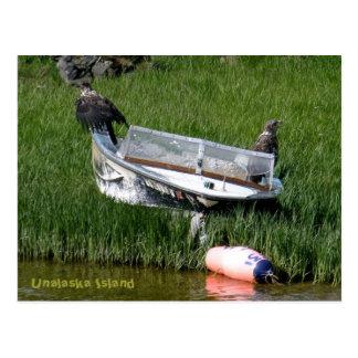 Jóvenes de Eagle calvo en un Skiff de la pesca Postales