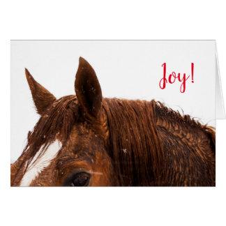 Joy Horse Photo Holiday Christmas Greeting Card