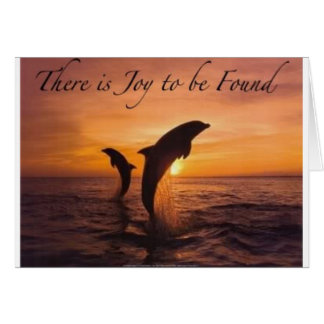 joy in the world of dolphins card