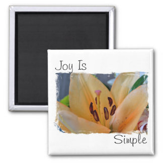 Joy is simple magnet