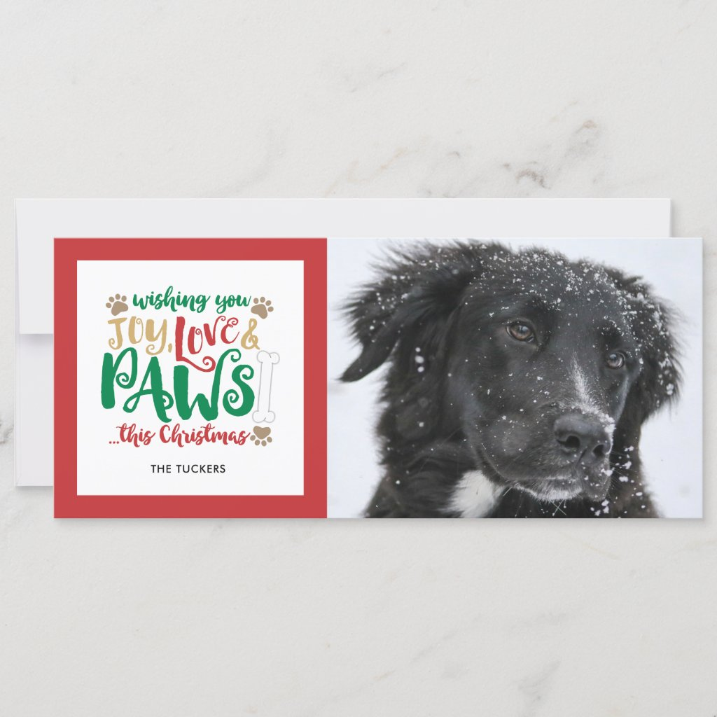 Joy Love Paws Dog Christmas Photo Holiday Card